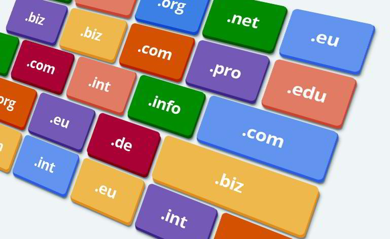 Domain and Hosting, What are They? What is the Domain of a Website?